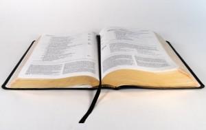 Study Bible Small